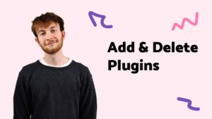 Plugins Add Delete-01